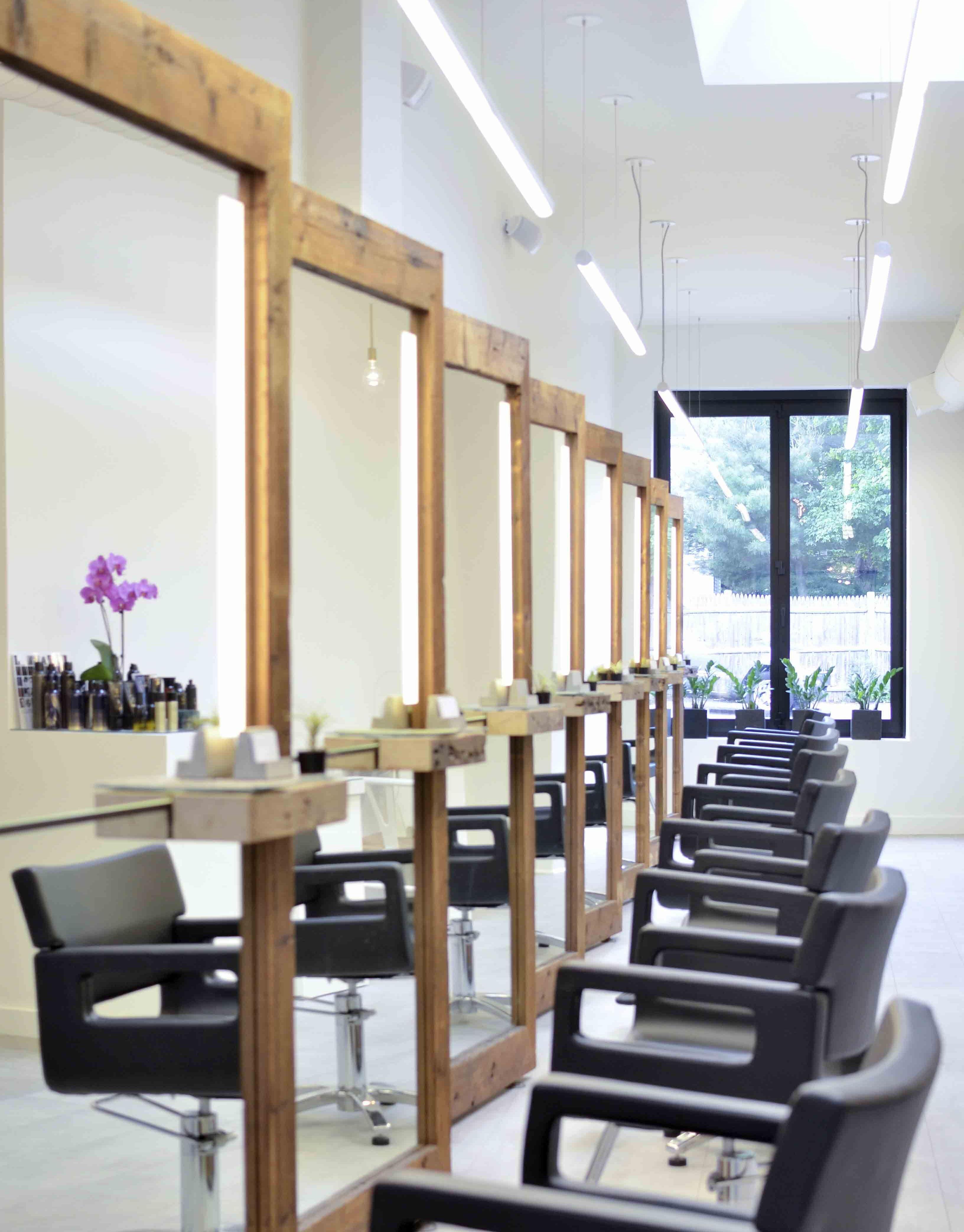 newton salon v3-1