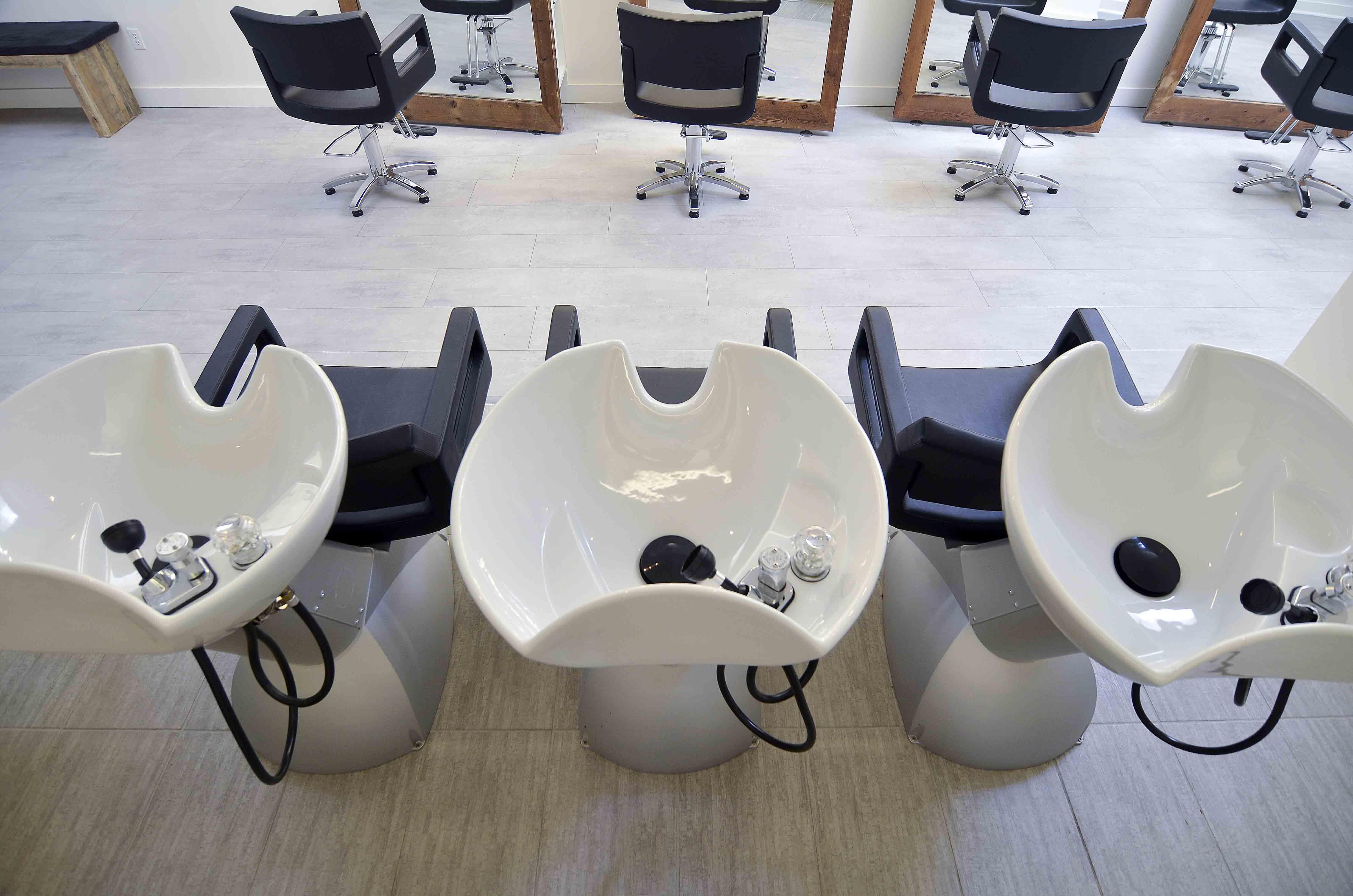 newton salon v6